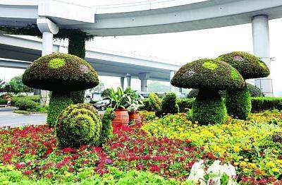 动植物雕塑蘑菇蜗牛立体花坛绿雕